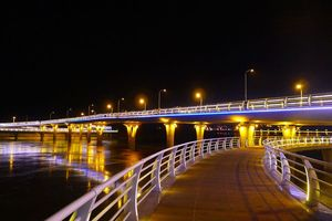江心岛的步行桥夜景