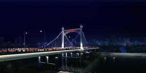 雅士利大桥亮化