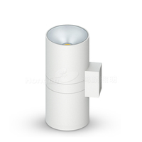 COB 30W*2 户外壁灯